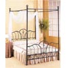 Black Wrought Iron Tulip Head/Footboard 2989_ (CO)