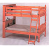 Bunk Bed With Bookcase  5500  (PKC)