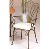 Antique Bronze Arm Chair With Fan Back 7073 (CO)