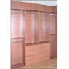 Reach In Closet Model # 2 (VF)